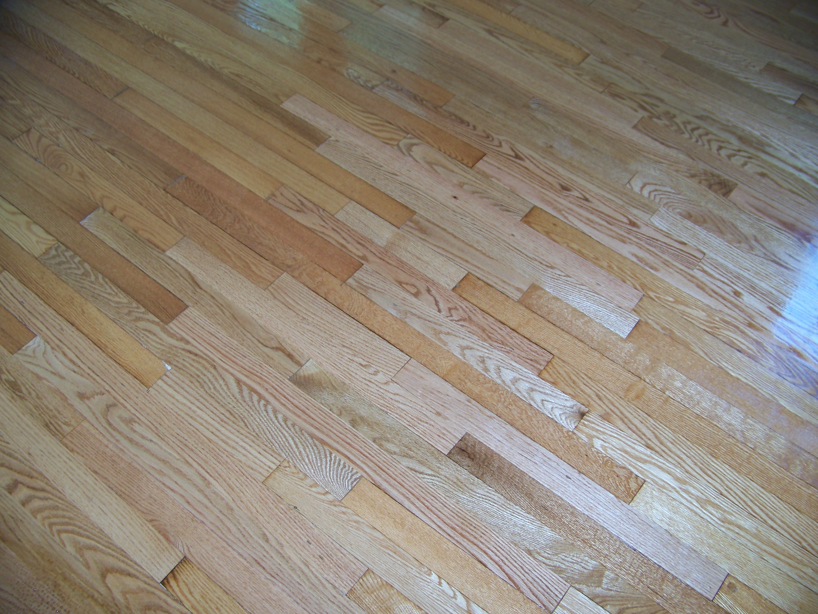 restaining wood floors